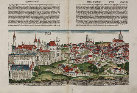 Antike Landkarten, Schedel, Österreich - Ungarn, Budapest, 1493: Buja