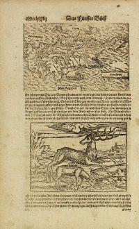 Antike Landkarten, Münster, Zypern, 1574: Cyprus