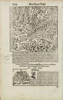 Antike Landkarten, Münster, Schweiz, Neuenburgersee, 1574: [Neuwnburger See]