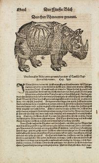 Graphics, Münster, Rhinoceros, Elephant, 1574: Das thier Rhinoceros genannt.