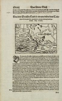 Antique Maps, Münster, Poland, East Prussia, Lithuania, Baltic Sea, 1574: Von dem Preussen Land so etwann under dem Teutschen Orden gewesen, jetz aber ist es zu eim Hertzogthumb gemacht.