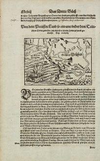 Antike Landkarten, Münster, Polen, Ostpreußen, Litauen, Ostsee, 1574: Von dem Preussen Land so etwann under dem Teutschen Orden gewesen, jetz aber ist es zu eim Hertzogthumb gemacht.