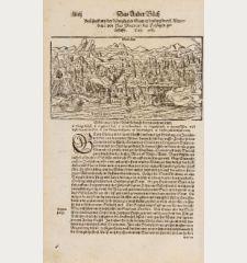 Beschreibung der königlichen Statt Edinburg durch Alexandrum von Ales / Doctorem der Heyligen Geschrifft