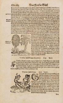 Grafiken, Münster, Südost Asien, Kannibalismus, 1574: Von der Insel Giava