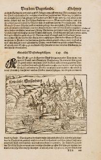 Antike Landkarten, Münster, Balkan, Serbien, Belgrad, 1574: Kriechisch Wyssenburg / Griechisch Weissenburg belagert