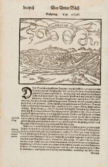 Antike Landkarten, Münster, Österreich - Ungarn, Salzburg, 1574: Saltzburg