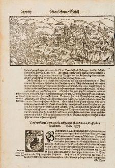 Antike Landkarten, Münster, Schweiz, Freiburg im Üechtland, Fribourg, 1574: [ohne Titel]