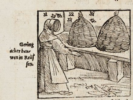 Graphics, Münster, bees, Beekeeper, 1574: Gering ackerbau wen in Reüssen