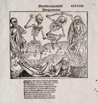 Grafiken, Schedel, Totentanz, 1493: Imago Mortis