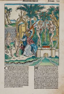 Graphics, Schedel, Adam and Eve, Garden of Eden, 1493: [Adam and Eve]