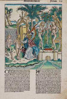 Grafiken, Schedel, Heiliges Land, Adam und Eva, Garten Eden, 1493: [Adam and Eve]