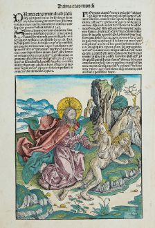 Graphics, Schedel, Adam and Eve, God the Father, Creation Eve, 1493: [Creation of Eve]