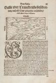 Antique woodcut map of France. Printed in Basle by Heinrich Petri in 1550.