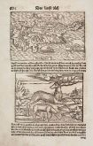Antique woodcut map of Cyprus. Printed in Basle by Heinrich Petri in 1550.