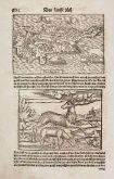 Antike Holzschnitt-Landkarte von Zypern. Gedruckt bei Heinrich Petri im Jahre 1550 in Basel.
