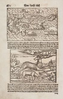 Antique Maps, Münster, Cyprus, 1550: Cyprus