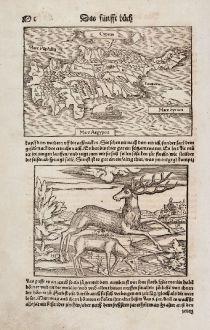 Antike Landkarten, Münster, Zypern, 1550: Cyprus