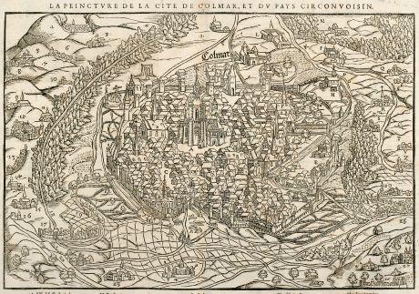 Antike Landkarten, Münster, Frankreich, Elsass, Colmar, 1550: La Peincture de la Cite de Colmar, et du Pays Circonvoisin.
