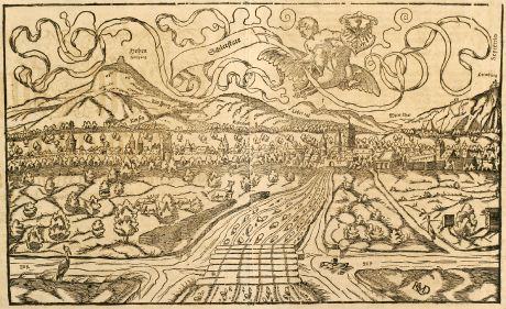 Antike Landkarten, Münster, Frankreich, Elsass, Schlettstadt, 1550: Schlettstatt / etwann ein Dorff deß H. Römischen Reichs: aber jetz ein zierliche Statt.