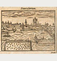 Francofurtum / Schuueinfurdia